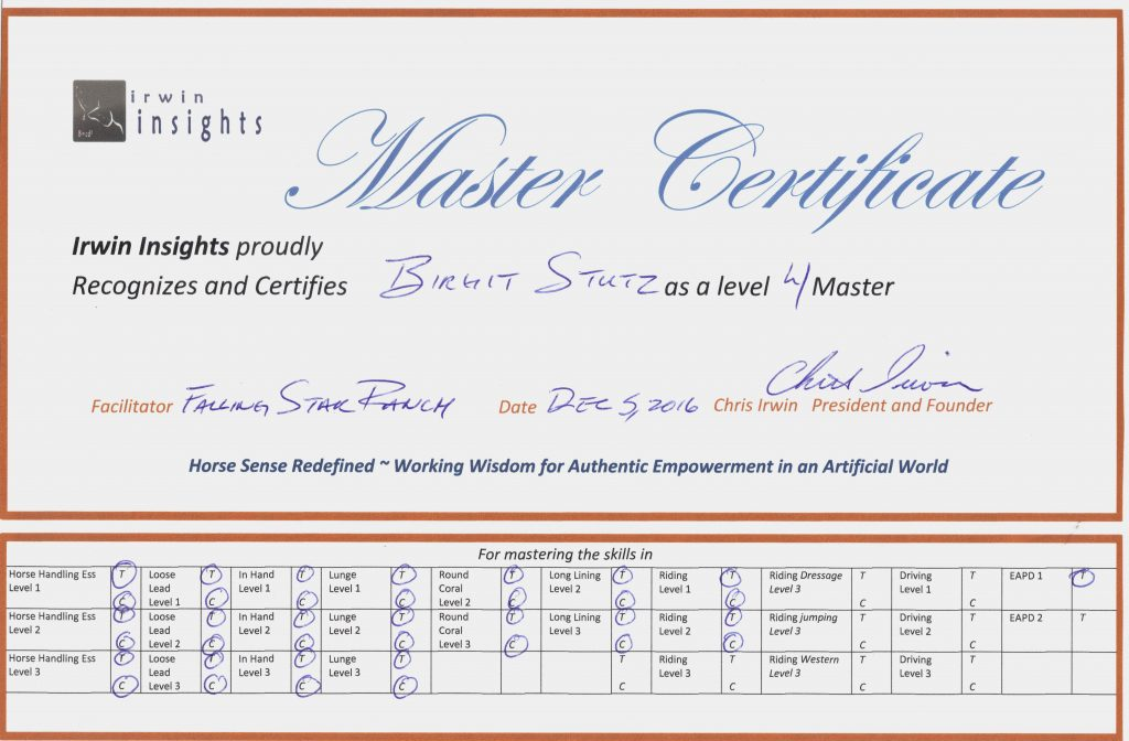 Level 4 Master certification
